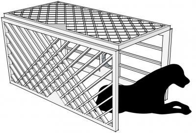 PHOOEY Architects Pavilion Capital